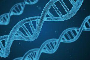 Abschreckung und Diebstahlschutz durch künstliche DNA