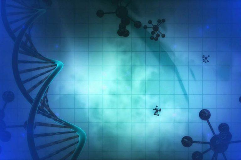 Diebstahlschutz durch künstliche DNA